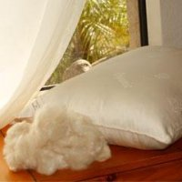 Kapok Fill Vegan Pillow - King