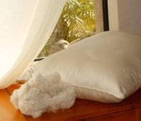 Organic Cotton Vegan Pillows - King