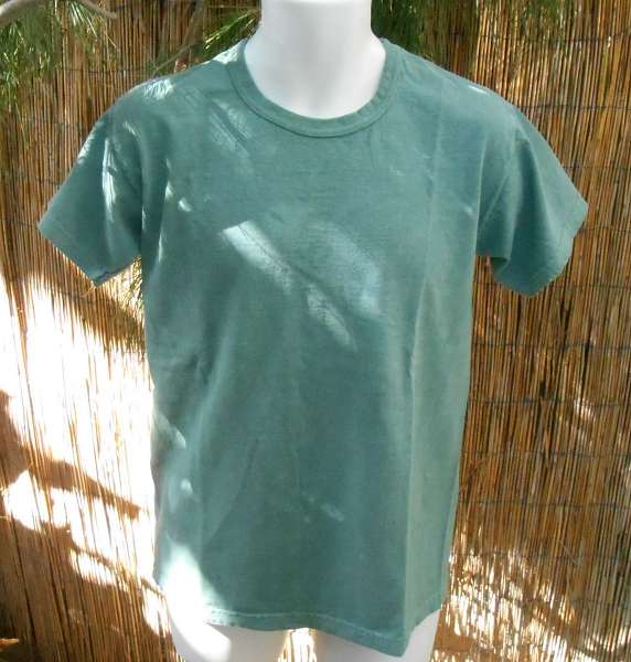 Basic Organic Tee in Sage Green - Click Image to Close